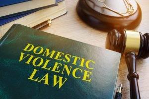 Domestic Violence Law Book